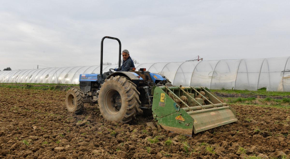 operatore agricolo che sovescia il terreno
